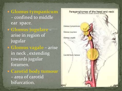 Glomus Tumour and its Approaches
