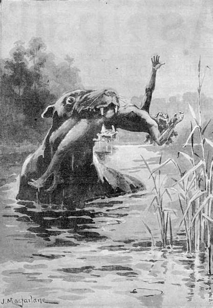 Top 10 Australian Mythical Creatures & Cryptids