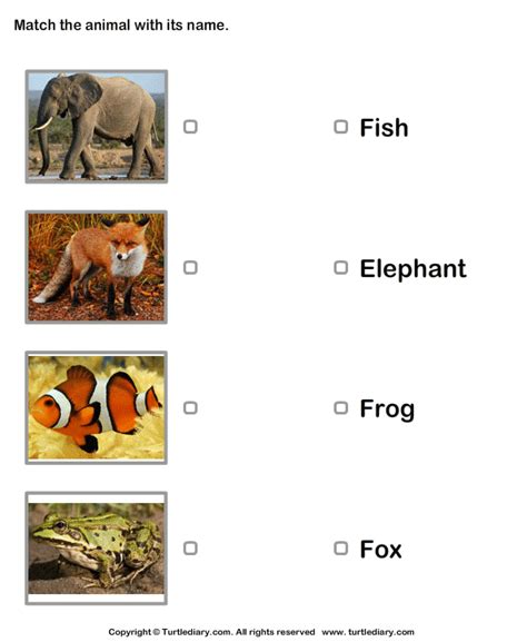 Animals Pictures and Names Worksheet - Turtle Diary
