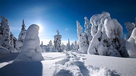 Winter in Finland Wallpapers | HD Wallpapers | ID #9702