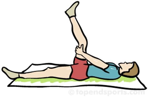 Basic Stretches Flashcards by ProProfs