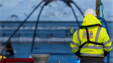 Norway Royal Salmon sells southern farms for £111m